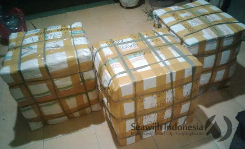 Standart Packaging Seawijh Indonesia (We Are Secure)